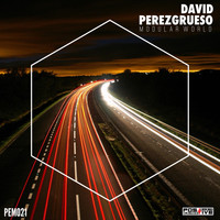 David Perezgrueso - Modular World