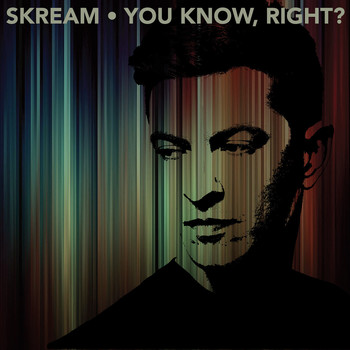 Skream - You Know, Right?