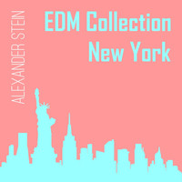 Alexander Stein - EDM Collection New York