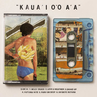 Gentle Friendly - Kaua'i O'o A'a