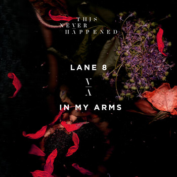Lane 8 - In My Arms