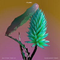 Flume - Say It (Clean Bandit Remix [Explicit])