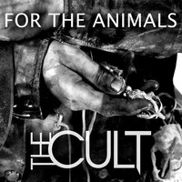 The Cult - For the Animals