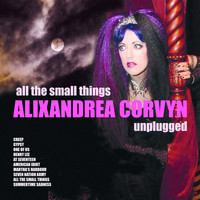 Alixandrea Corvyn - All The Small Things - Alixandrea Corvyn Unplugged