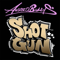 Audio Bullys - Shotgun
