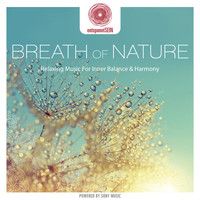 Davy Jones - entspanntSEIN - Breath of Nature (Relaxing Music for Inner Balance & Harmony)