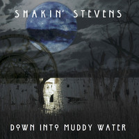 Shakin' Stevens - Down into Muddy Water (Radio Mix)