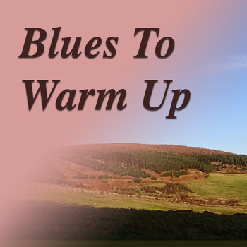 Various Artists - Blues To Warm You Up