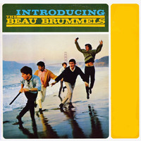 The Beau Brummels - Introducing