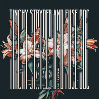 Tinchy Stryder - Imperfection - Mixes (Explicit)