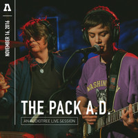 The Pack a.d. - The Pack a.d. on Audiotree Live