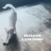 Relaxing Rain Sounds, Sleep Rain and Soothing Sounds - Relaxation & Sleep Sounds
