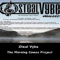 Steal Vybe - The Morning Comes Project