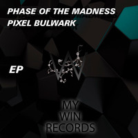 Phase Of The Madness - Pixel Bulwark