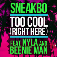 Sneakbo - Too Cool (Right Here)