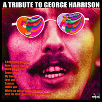 Jem - A Tribute To George Harrison