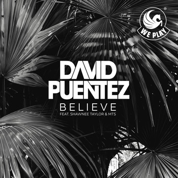 David Puentez - Believe (feat. Shawnee Taylor & MTS)