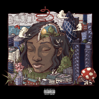 Little Simz - Stillness in Wonderland (Explicit)