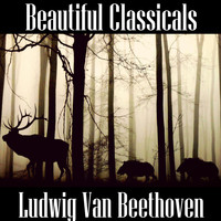 Ludwig van Beethoven - Beautiful Classicals: Ludwig van Beethoven