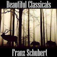 Franz Schubert - Beautiful Classicals: Franz Schubert
