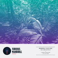 The Funk District - Mandrill Cuts 002