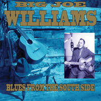 Big Joe Williams - Blues From The South Side