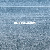 Rain, Ocean Sounds and Rainfall - Rain Collection