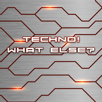 Various Artists - Techno! What Else?