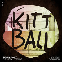 Sascha Sonido - Turn Down for What (Inc. RMX by Definition)