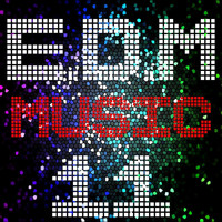 Reech - E D M Music, Vol. 11