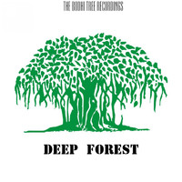 Linkov Prod. - Deep Forest