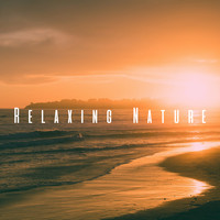 Ocean Waves For Sleep, Ocean Sounds and Ocean Sounds Collection - Relaxing Nature