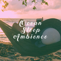 Nature Sounds, Thunderstorm Sleep and Nature Sound Series - Ocean Sleep Ambience
