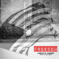 Camille - Freedom (feat. Aaronic)