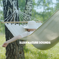 Rain, Ocean Sounds and Rainfall - Sleep Nature Sounds