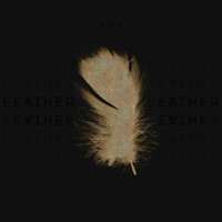 Cole - Feather
