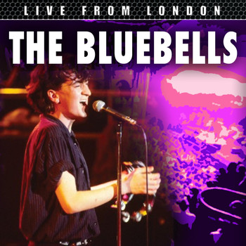 The Bluebells - Live From London