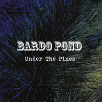 Bardo Pond - Under The Pines