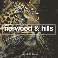 Norwood & Hills - Baiji - EP