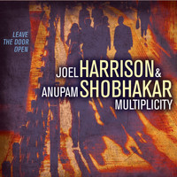 Joel Harrison - Multiplicity: Leave the Door Open (feat. Gary Versace, Hans Glawischnig & Dan Weiss)