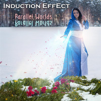 Induction Effect - Parallel Worlds