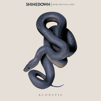 Shinedown - How Did You Love