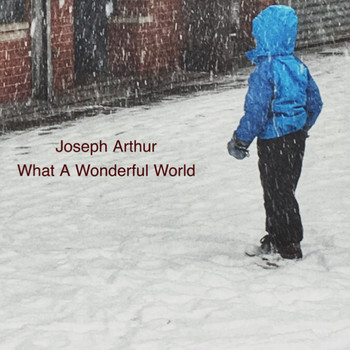 Joseph Arthur - What A Wonderful World