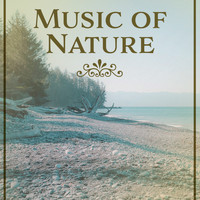 Nature Sounds - Music of Nature – Calming Sounds of Nature, Relaxing Music, Massage, Sleep, Meditation, Relaxed Body & Soul