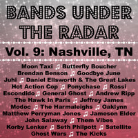 Moon Taxi - Bands Under the Radar, Vol. 9: Nashville, Tn