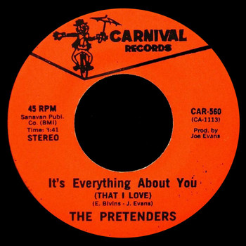 The Pretenders - It's Everything About You That I Love