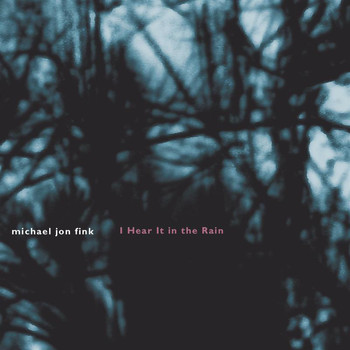 Michael Jon Fink - Fink: I Hear it in the Rain
