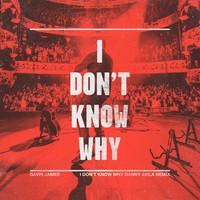 Gavin James - I Don't Know Why (Danny Avila Remix)