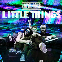 Animal Noise - Little Things (Explicit)