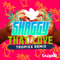 Shaggy - That Love (Tropixx Remix)